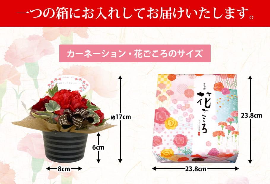 花ごころ 小缶