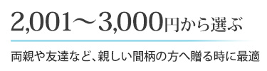 2,001~3,000円から選ぶ