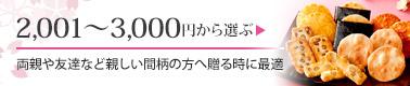 2001~3000円から選ぶ