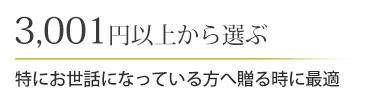 3,001円以上から選ぶ
