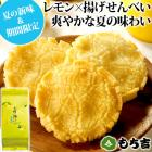 (※期日指定8月16日まで)太陽の輝き 詰替パック レモン味