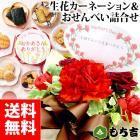 【他商品との同梱不可】【日時指定必須】花ごころ 生花セット ~生花とお煎餅のセット
